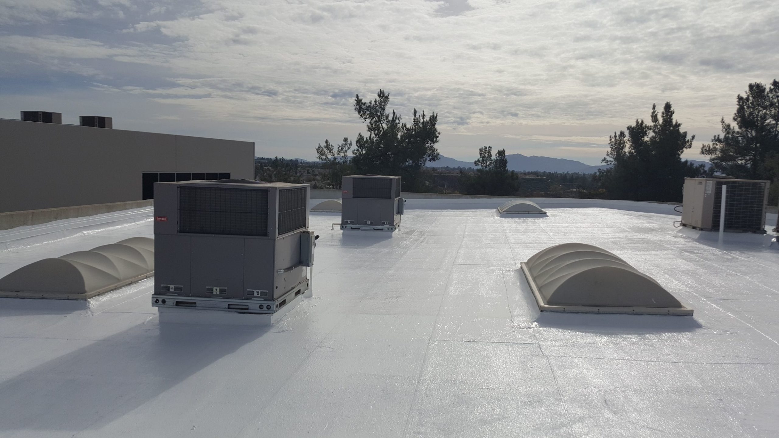 Commercial white roofs scaled
