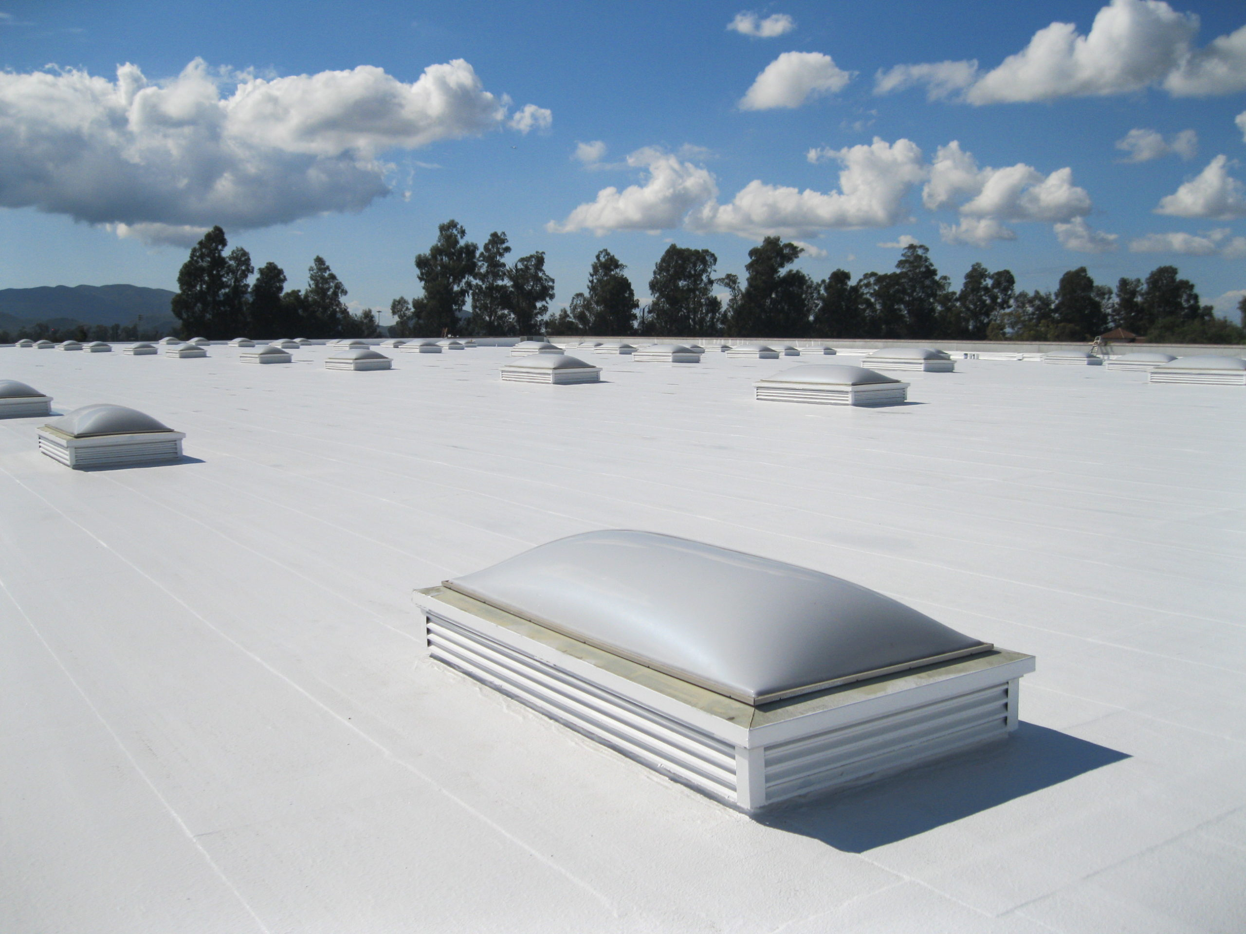 Membrane Roofing With Nice white Coating scaled
