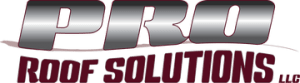 rsz proroofsolutions final logo